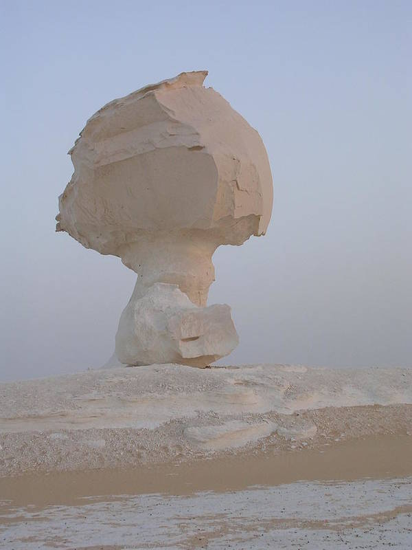 Desert Poster featuring the photograph White Desert by Nina Kamp