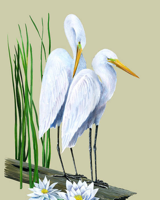 Egret Poster featuring the painting White Egrets And White Lillies by Kevin Brant