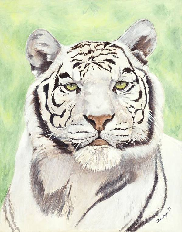 Tiger Poster featuring the painting White Silence by Shawn Stallings