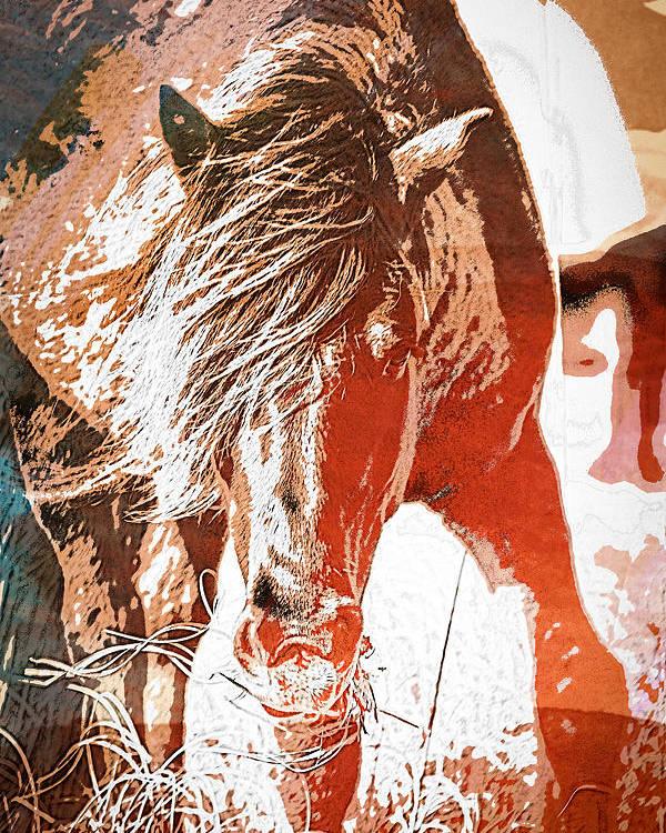Farm Poster featuring the photograph Wild-wc by Joye Ardyn Durham