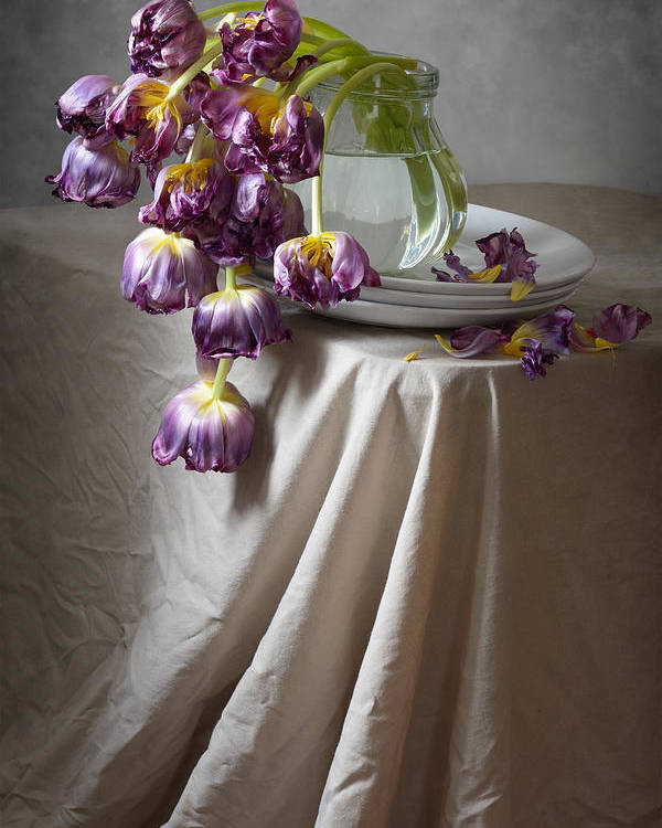 Floral Poster featuring the photograph Wilted Bouquet Of Tulips by Nikolay Panov