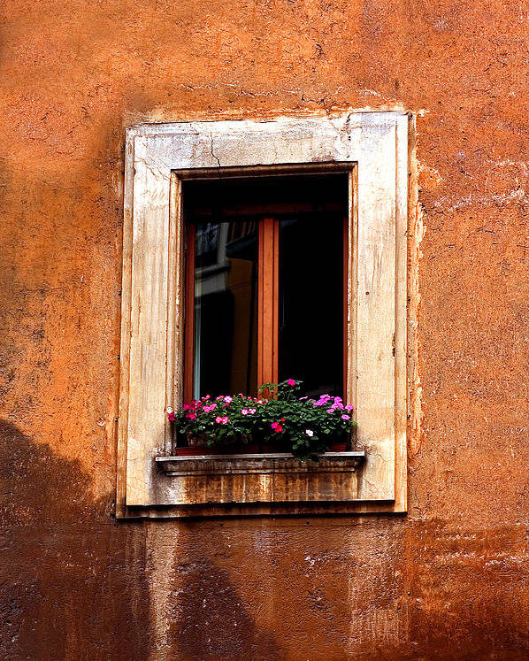 Italy Poster featuring the photograph Window And Flowers Rome by Xavier Cardell