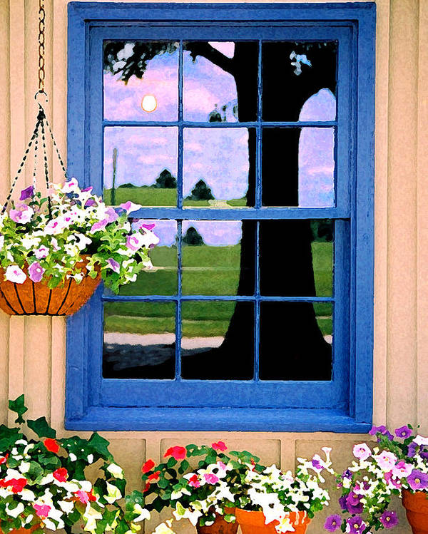 Still Life Poster featuring the photograph Window by Steve Karol