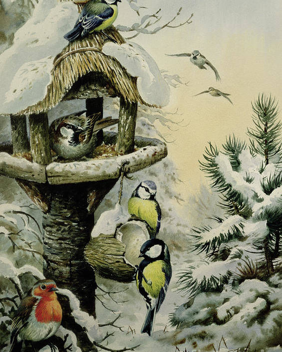 Blue Tits;great Tits; House Sparrows; Robin; Winter Bird Table; Snow; Tree; Fir Tree; Birds Poster featuring the painting Winter Bird Table With Blue Tits by Carl Donner
