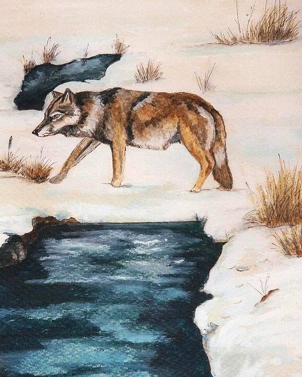Coyote Poster featuring the painting Winter Coyote by Debra Sandstrom