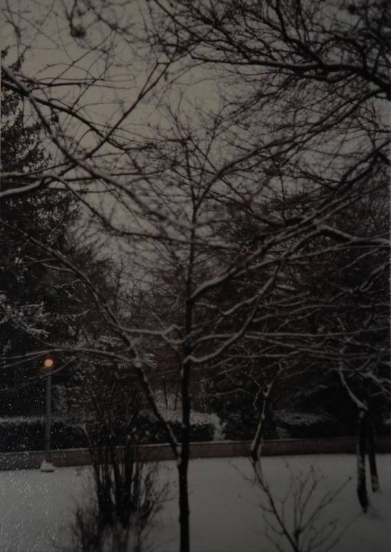 Lights Poster featuring the photograph Winter Dusk by Rob Hans
