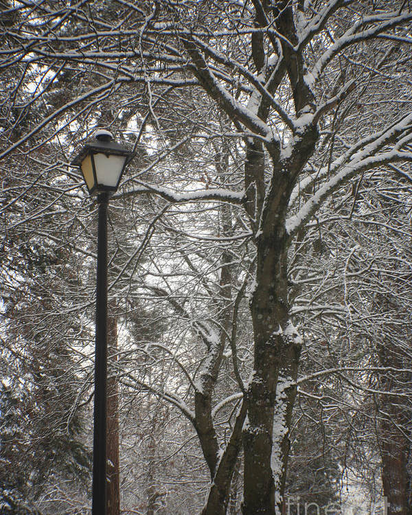 Lamp Poster featuring the photograph Winter Lamp Post by Idaho Scenic Images Linda Lantzy
