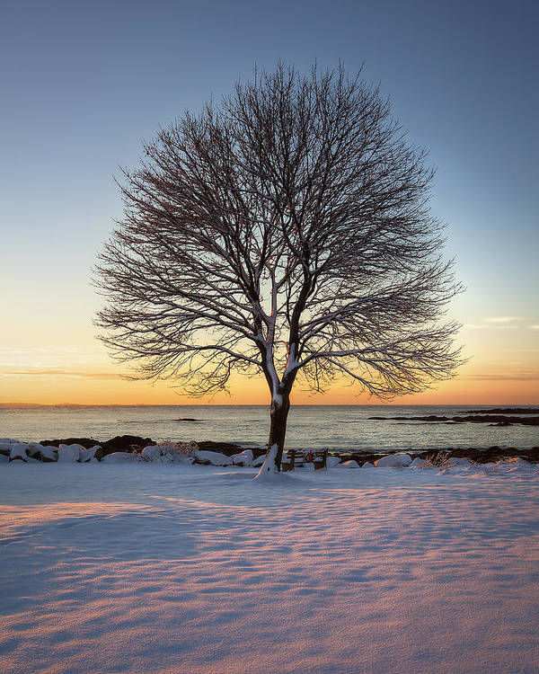 Winter Poster featuring the photograph Winter On The Coast by Eric Gendron