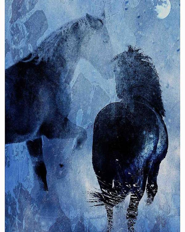 Poster featuring the photograph Winter Storm by Nicole Von Tempske