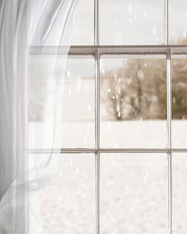 Window Poster featuring the photograph Winter Through A Window by Amanda Elwell
