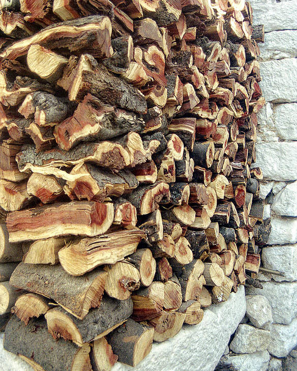 Wood Poster featuring the photograph Winter Woodpile by Paul Cowan
