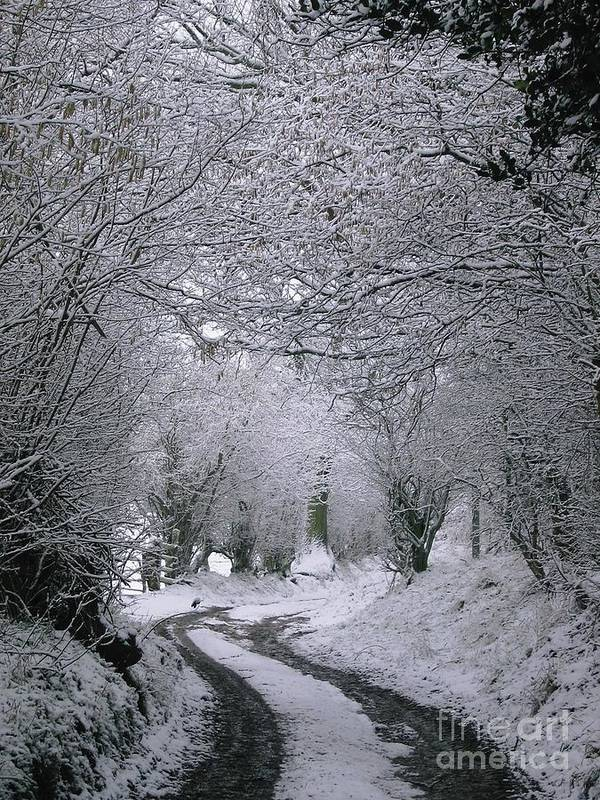 Winter Poster featuring the photograph Winters Lane by Jackie Tweddle