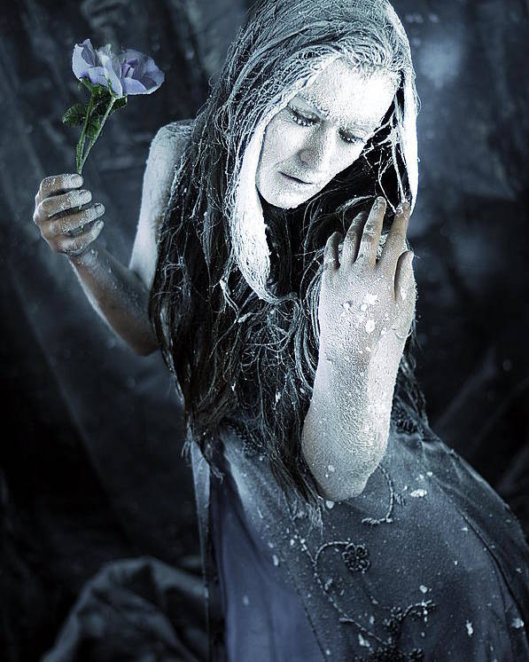 Fine Art Poster featuring the photograph Winter's Sorrow by Cliff Nixon