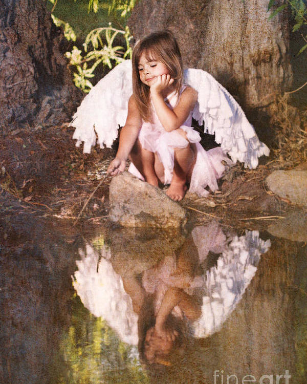 Fairy Poster featuring the photograph Woodland Fairy by Cindy Singleton