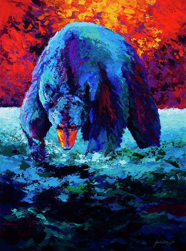 Bear Bears Black Cubs Grizzly Brown Alaska Hunter Forest Wildlife Western Poster featuring the painting Working The Shallows by Marion Rose