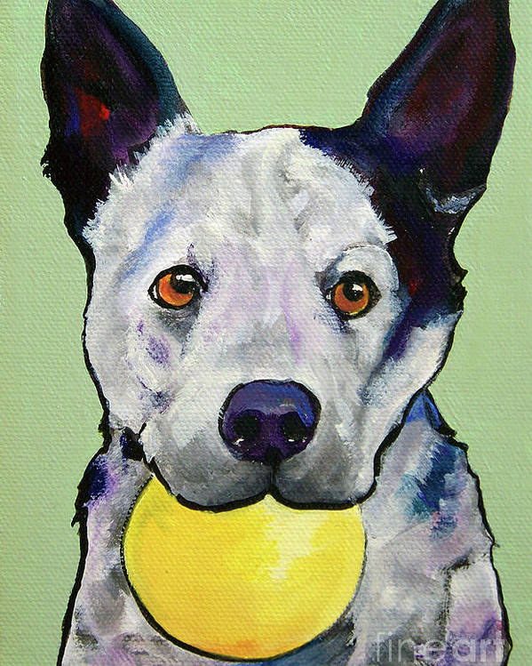 Australian Cattle Dog Poster featuring the painting Yellow Ball by Pat Saunders-White