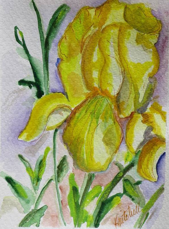 Floral Poster featuring the painting Yellow Iris by Kathy Mitchell