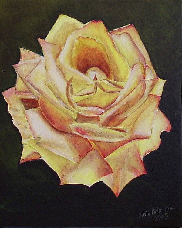 Rose Poster featuring the painting Yellow Rose by Silvia Philippsohn