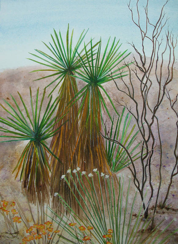 Nature Poster featuring the painting Yucca Stand by Myrna Salaun