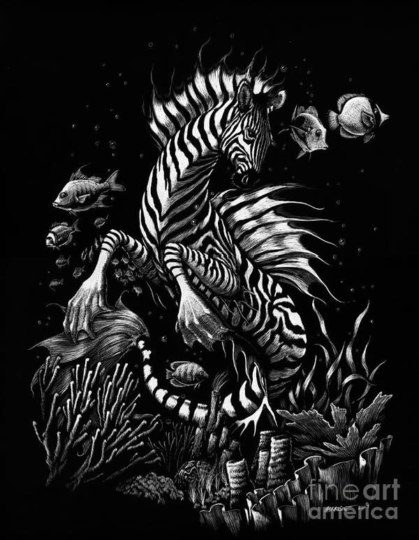 Seahorse Poster featuring the drawing Zebra Hippocampus by Stanley Morrison