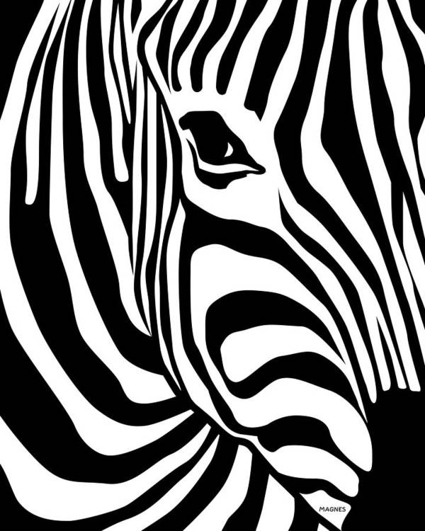 Zebra Poster featuring the digital art Zebra by Ron Magnes