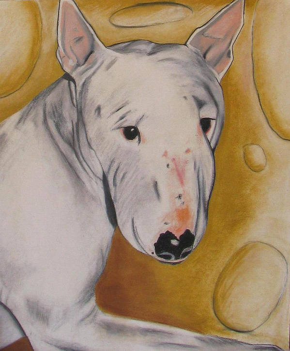 Dog Painting Poster featuring the pastel Zoe by Michelle Hayden-Marsan