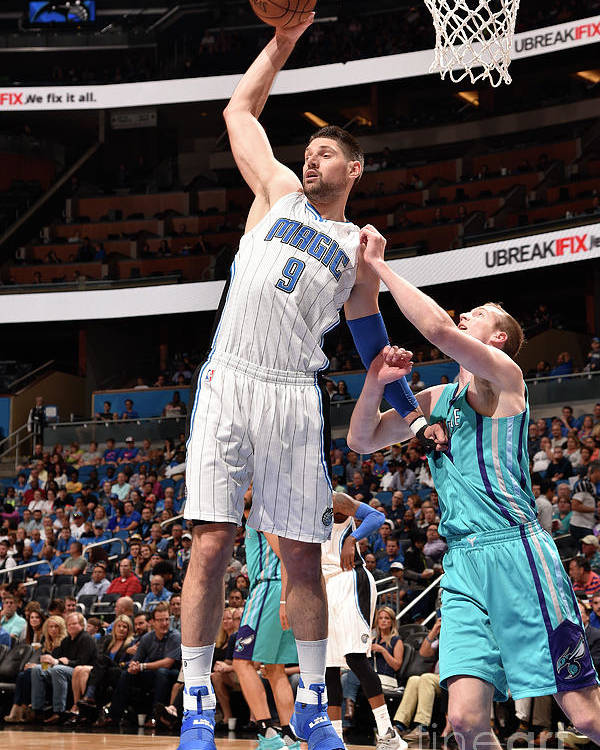Nba Pro Basketball Poster featuring the photograph Charlotte Hornets V Orlando Magic by Gary Bassing