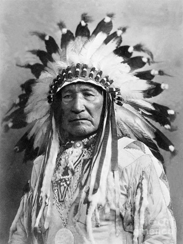 Chief Poster featuring the photograph Indian Chief by Steven Parker