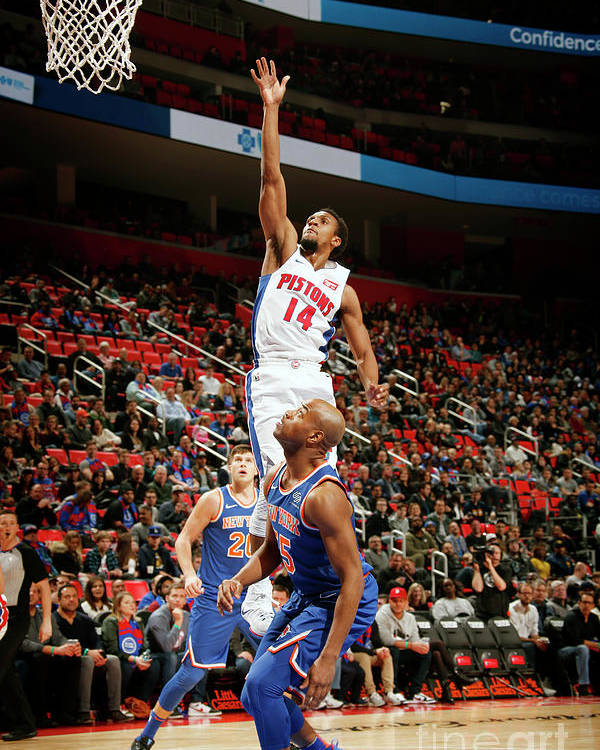 Nba Pro Basketball Poster featuring the photograph New York Knicks V Detroit Pistons by Brian Sevald