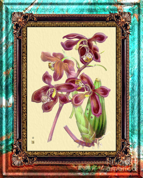 Marble Poster featuring the mixed media Vintage Orchid Antique Design Marble Caribbean-blue by Baptiste Posters