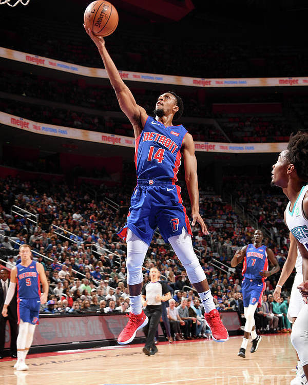 Nba Pro Basketball Poster featuring the photograph Charlotte Hornets V Detroit Pistons by Chris Schwegler