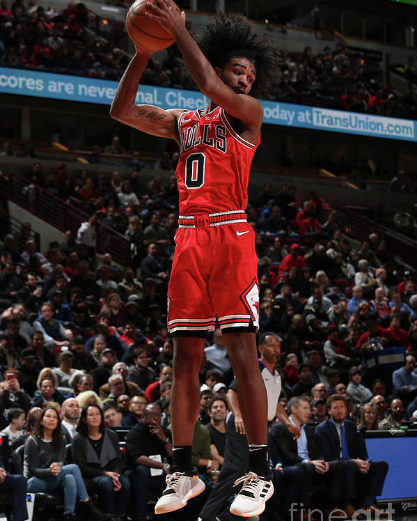 Coby White Poster featuring the photograph New York Knicks V Chicago Bulls by Gary Dineen