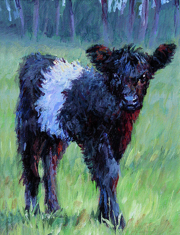 Belted Galloway Poster featuring the painting Baby by L Diane Johnson