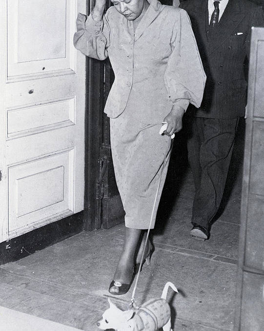 Pets Poster featuring the photograph Billie Holiday Leaving Police Station by Bettmann