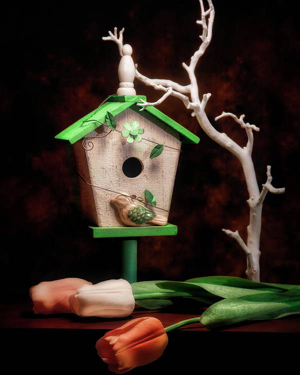 Birdhouse Poster featuring the photograph Birdhouse With Tulips by Tom Mc Nemar