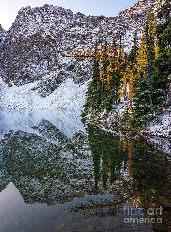 Enchantments Poster featuring the photograph Blue Lake Fall Colors Curved Larch by Mike Reid