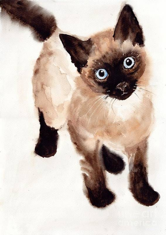 Bubbly Poster featuring the painting Cat Malcolm by Suzann Sines