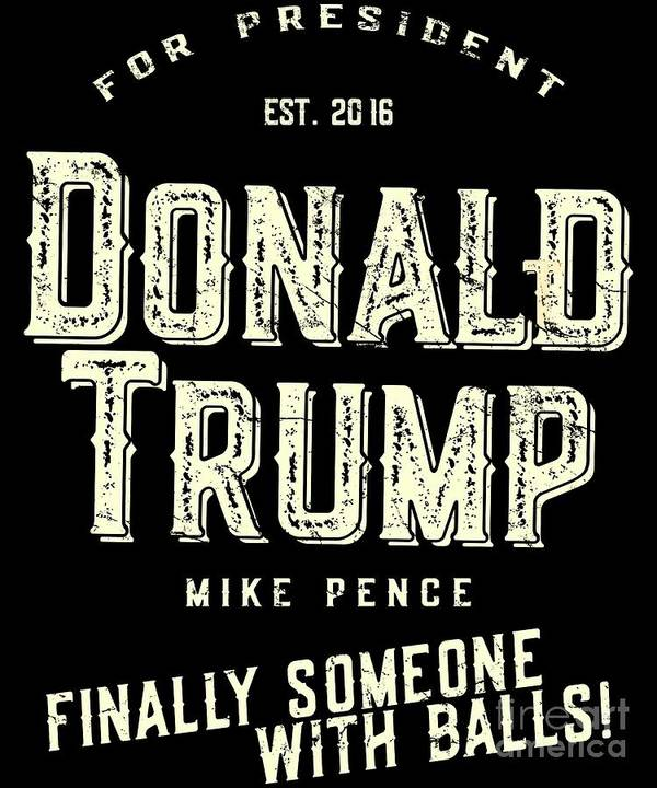 Cool Poster featuring the digital art Donald Trump Mike Pence 2016 Vintage by Flippin Sweet Gear