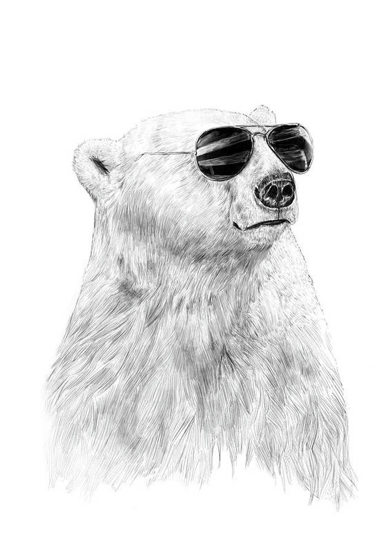 Polar Bear Poster featuring the drawing Don't let the sun go down by Balazs Solti