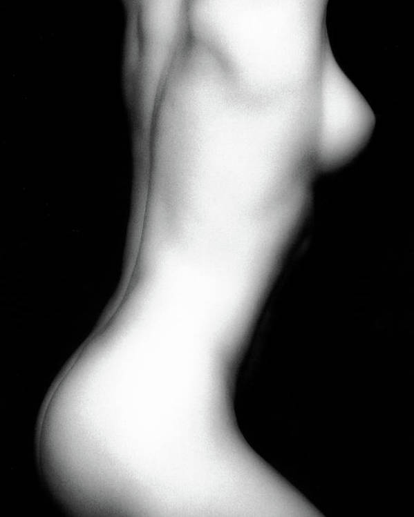 Nude Poster featuring the photograph Erica's Torso by Lindsay Garrett