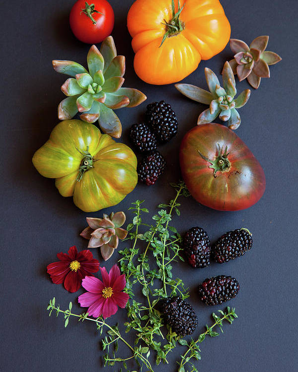 Foothill Ranch Poster featuring the photograph Heirloom Tomatoes With Herbs, Berries by Beth D. Yeaw