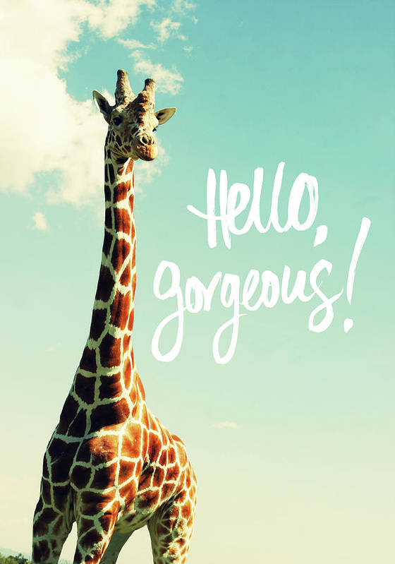 Hello Poster featuring the painting Hello Gorgeous Giraffe by Susan Bryant