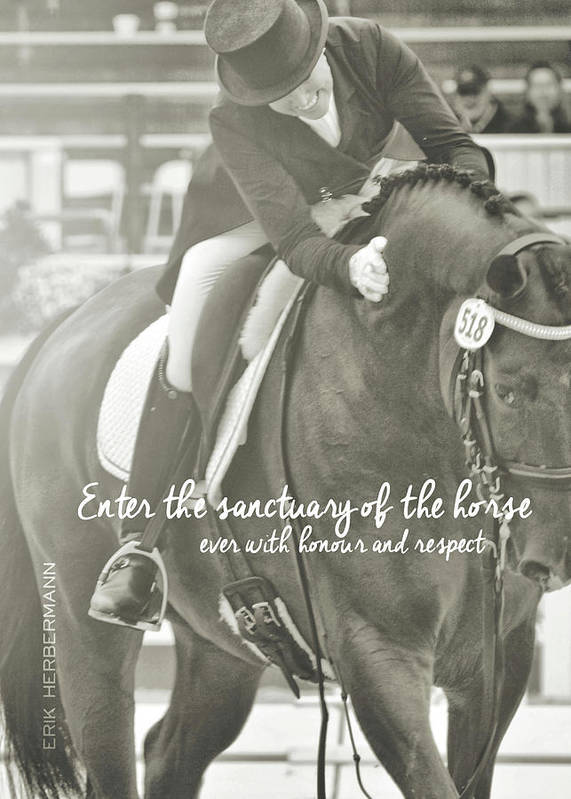 Horse Poster featuring the photograph Honour And Respect Quote by JAMART Photography