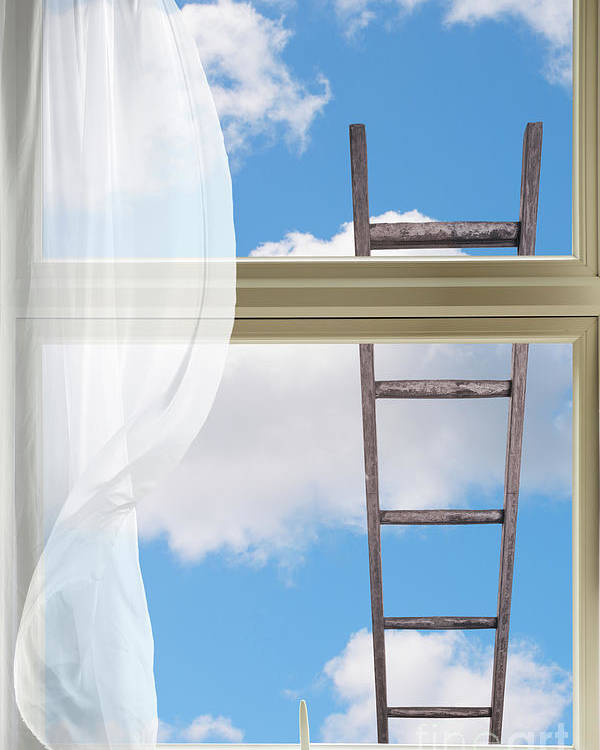 Window Poster featuring the photograph Ladder Against Window Pane by Amanda Elwell