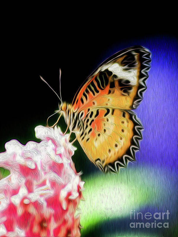 Butterfly Poster featuring the digital art Malay Lacewing Butterfly I by Kenneth Montgomery