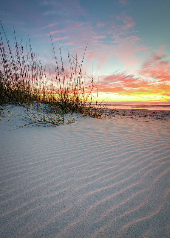 Clearwater Poster featuring the photograph North Beach Dunes by Clay Townsend