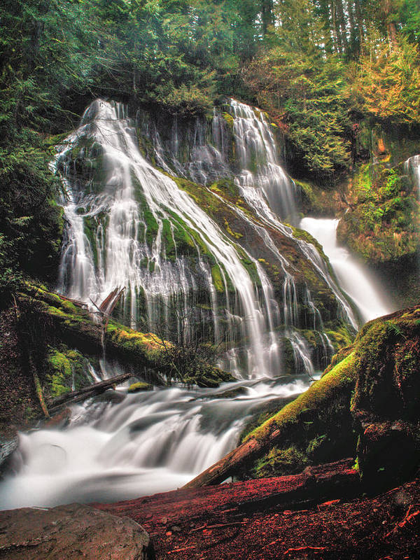 Waterfall Poster featuring the photograph Panther Creek by Gene Graff