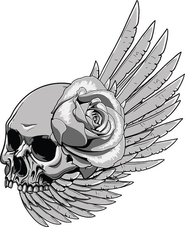 Skull Poster featuring the digital art Skull Wing Rose by Passion Loft