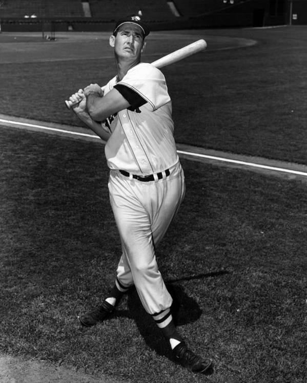 People Poster featuring the photograph Ted Williams by Hulton Archive