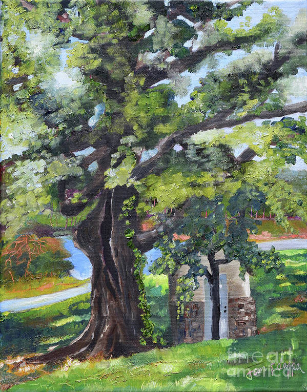 Large Oak Tree Poster featuring the painting Tree At Cartecay by Jan Dappen